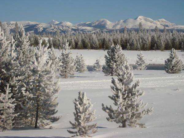 Snowmobile Yellowstone