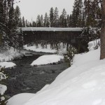 Yellowstone Snowmobiling Tours